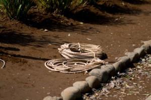 束縛ロープ